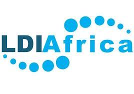 LDIA Africa emerging Fellowship