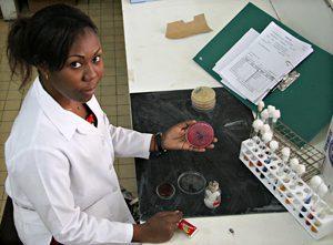 IRO Doctoral Scholarship