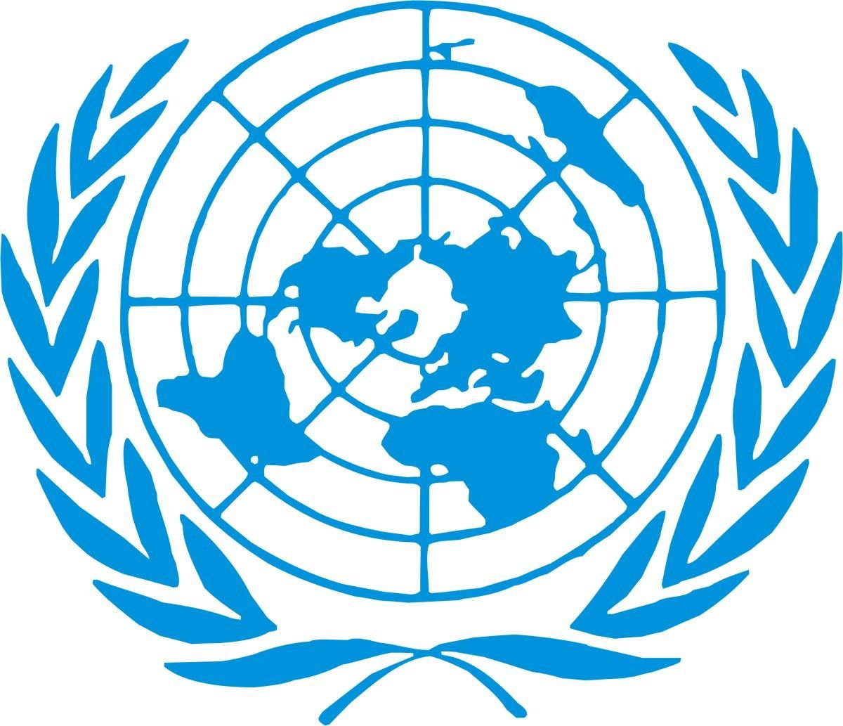 United-Nations-Youth-Professional-Programme