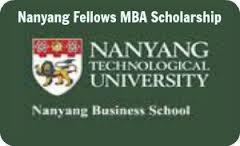 nanyang mba essay questions 2014