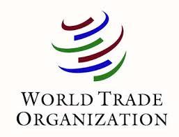 world-trade-organization-internship-programme