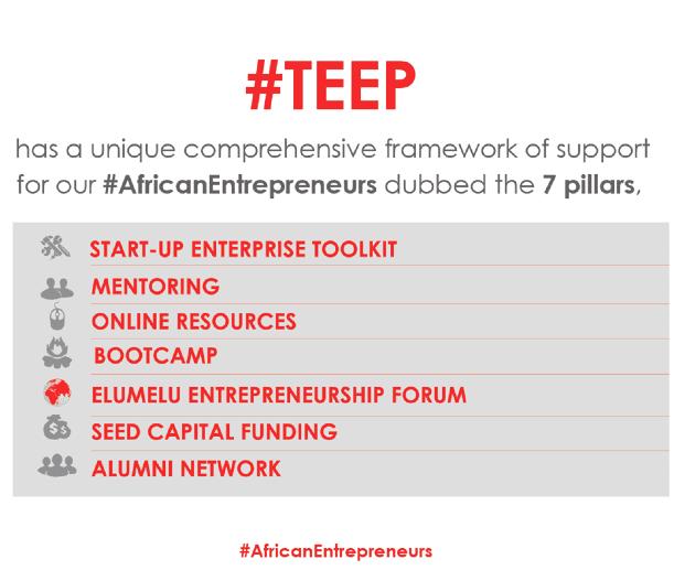 tony-elumelu-foundation-entrepreneurship-programme