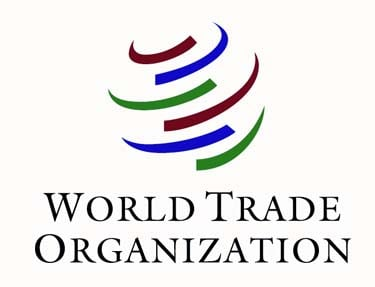 world trade organisation essay